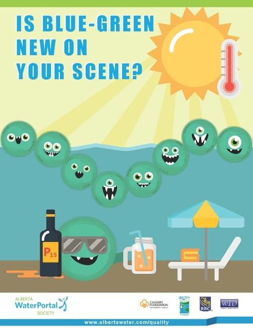 Image of a poster showing cartoon algae enjoying the sunshine